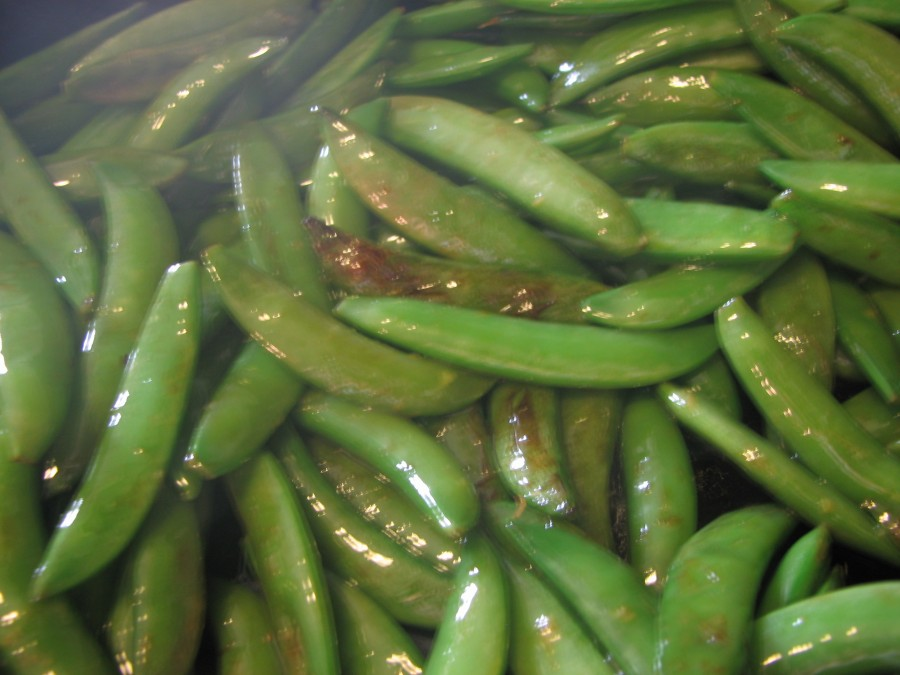 Snap peas begin to blister